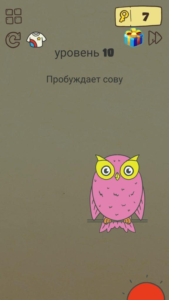 Пробуждает сову. 10 уровень Brain Crazy