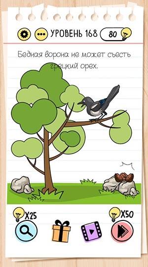 Бедная ворона не может съесть грецкий орех. 168 уровень Brain Test